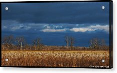 Before The Storm Acrylic Print by Vincent Dwyer