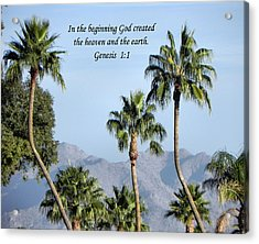 Acrylic Print featuring the photograph Beginning by Deb Halloran