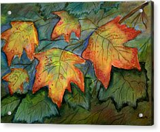 Beginning Fall  Leaves Acrylic Print by Belinda Lawson