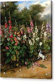 Behind The Hollyhocks Acrylic Print by Charles Hunt