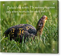 Behold The Turtle Acrylic Print