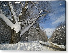 Belgrade Winter Acrylic Print