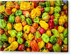 Belize Peppers Acrylic Print