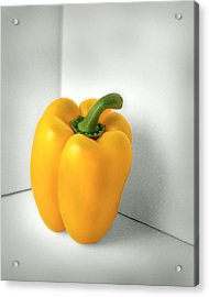 Bell Pepper Acrylic Print by Krasimir Tolev