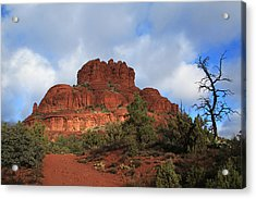 Bell Rock Acrylic Print by Donna Kennedy