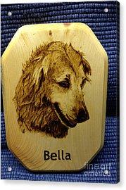 Bella Acrylic Print by Loring Slivinski