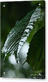 Bellissima Primavera Acrylic Print by  Andrzej Goszcz