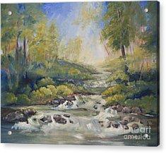 Below Amicalola Falls Painting Acrylic Print by Sally Simon