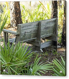 Bench In Nature Acrylic Print