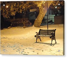 Bench In The Winter Park Acrylic Print by Guy Ricketts