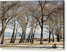 Bench With A View Acrylic Print by Sue Smith