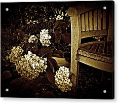 Bench With Hydrangeas Acrylic Print