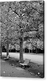 Benches In The Park Acrylic Print
