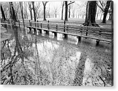 Acrylic Print featuring the photograph Benches Reflection Poets Walk by Dave Beckerman