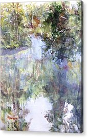 Bend In The River Acrylic Print by Mary Lynne Powers