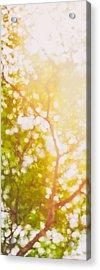 Beneath A Tree  14 5199   Diptych  Set 1 Of 2 Acrylic Print