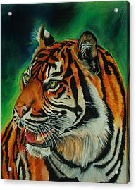 Bengal Acrylic Print by Jean Cormier