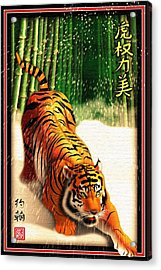 Bengal Tiger In Snow Storm  Acrylic Print by John Wills