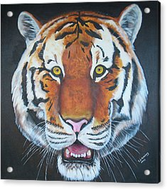 Acrylic Print featuring the painting Bengal Tiger by Thomas J Herring