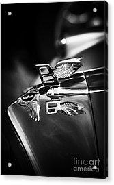 Bentley Hood Ornament  Acrylic Print by Tim Gainey