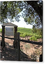 Benziger Winery In The Sonoma California Wine Country 5d24592 Vertical Acrylic Print by Wingsdomain Art and Photography