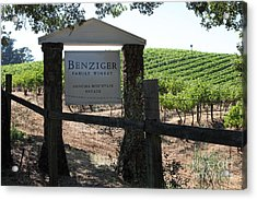 Benziger Winery In The Sonoma California Wine Country 5d24593 Acrylic Print by Wingsdomain Art and Photography