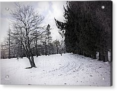 Berkshires Winter 9 - Massachusetts Acrylic Print by Madeline Ellis