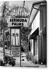 Bermuda Palms Bw Palm Springs Acrylic Print by William Dey