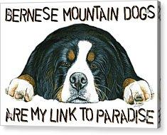 Bernese Mountain Dog Paradise Acrylic Print by Liane Weyers