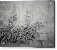 Acrylic Print featuring the drawing Bernheim Forest Plant by Stacy C Bottoms