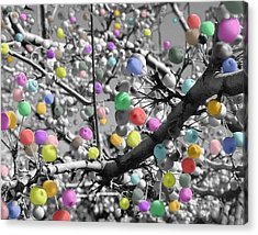 Acrylic Print featuring the photograph Berry Fantasy   by Raymond Earley