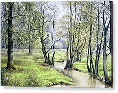 Acrylic Print featuring the painting Beside Still Waters by Rosemary Colyer