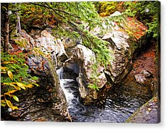 Acrylic Print featuring the photograph Beside The Water by Bill Howard