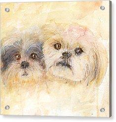 Best Buddies Acrylic Print by Peggy Bosse