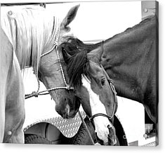 Acrylic Print featuring the photograph Best Friends by Steven Reed