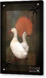 Best Friends Acrylic Print by Tom York Images