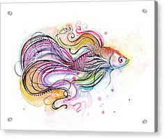 Betta Fish Watercolor Acrylic Print