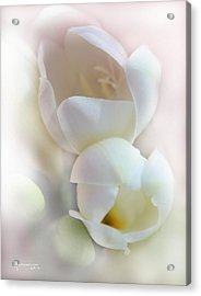 Better Together Acrylic Print by Kume Bryant