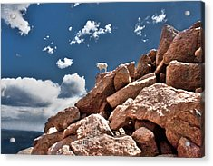 Between A Rock And A Hard Place Acrylic Print by Tejas Prints