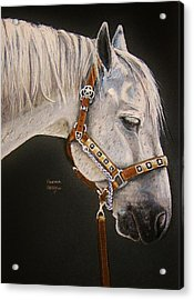 Between Classes Acrylic Print by Heather Gessell