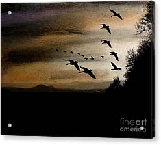 Between Sparta And Tomah 2 Acrylic Print by R Kyllo