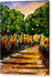 Between The Trees Acrylic Print by Constantinos Charalampopoulos