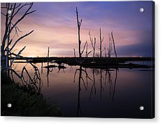 Between Two Worlds By Denise Dube Acrylic Print by Denise Dube