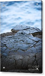 Acrylic Print featuring the photograph Between You And Me by Ellen Cotton
