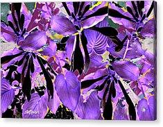 Acrylic Print featuring the digital art Beware The Midnight Garden by Seth Weaver