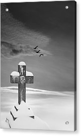 Beyond Acrylic Print by David Davies