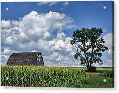 Beyond The Corn Acrylic Print