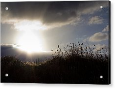 Acrylic Print featuring the photograph Beyond The Morning by Everett Houser