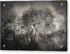 Beyond The Morning Acrylic Print by Taylan Apukovska
