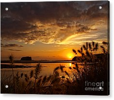 Acrylic Print featuring the photograph Beyond The Reeds by Trena Mara